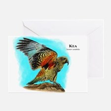 Kea Greeting Card