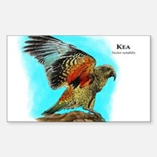 Kea Decal