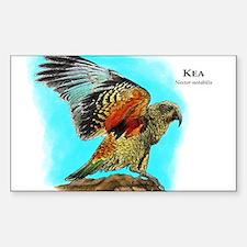 Kea Sticker (Rectangle)