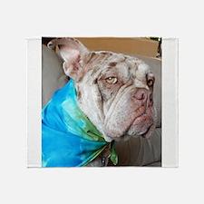 Old English Bulldog Throw Blanket