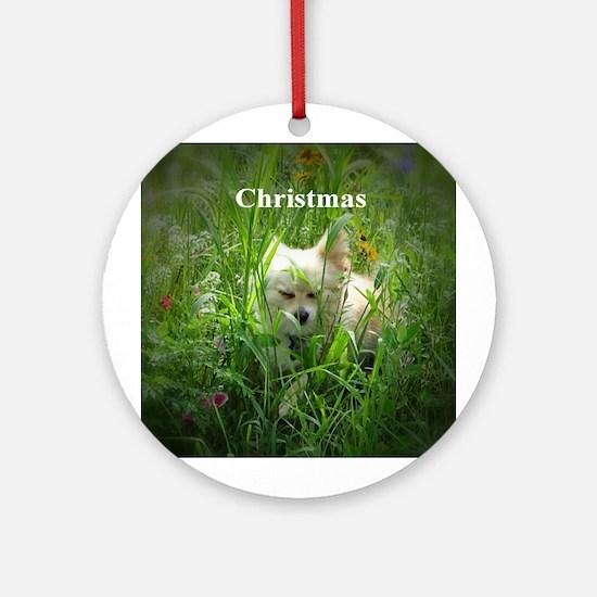 Pomeranian Round Ornament