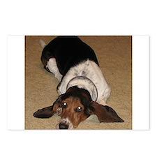 Cute Bassett hound Postcards (Package of 8)