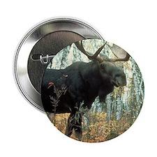 "Huge Moose 2.25"" Button"