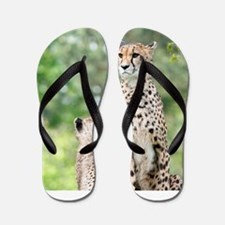 Cheetah004 Flip Flops