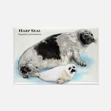 Harp Seal Rectangle Magnet