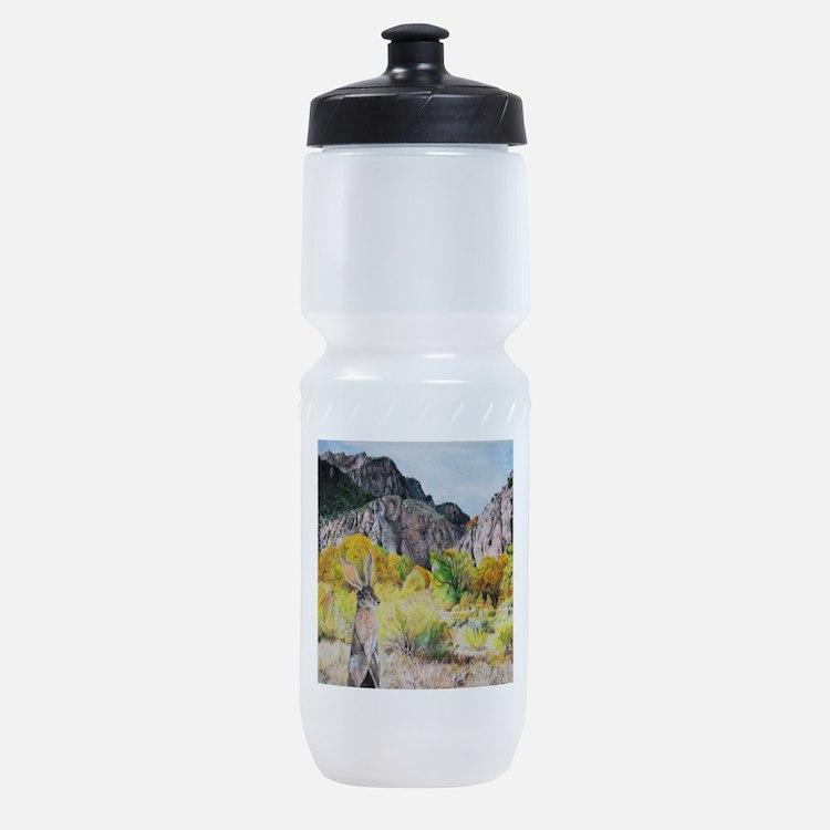 wild hare in Clear Creek Canyon.jpg Sports Bottle