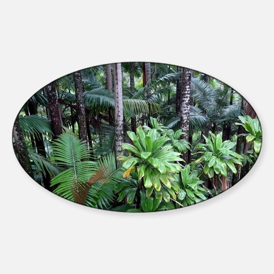 Tropical Forest 12 Decal