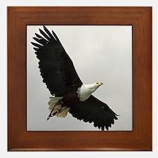 American Eagle 001 Framed Tile