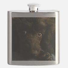 Cute Poodles Flask