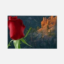 Cute Mountain rose Rectangle Magnet