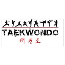 Taekwondo Canvas Art
