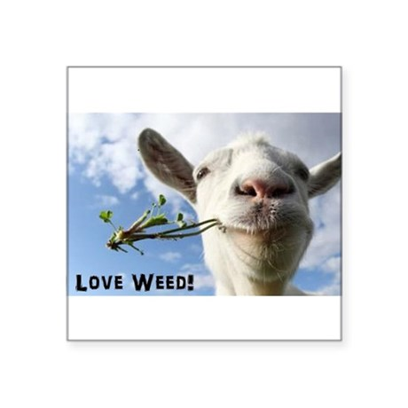 Weed Goat Sticker by Admin_CP129251274