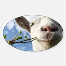 Weed Goat Decal