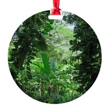 Hawaiian Jungle Ornament