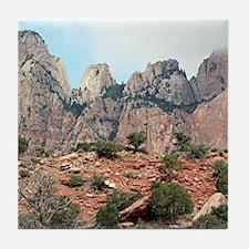 Zion National Park, Utah, USA 5 Tile Coaster