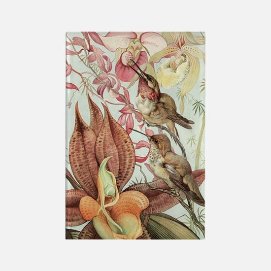 Vintage Hummingbirds and Orchids Rectangle Magnet