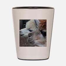 Unique Alpaca Shot Glass