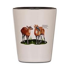 Indian Muntjac Deer Shot Glass