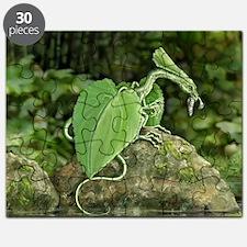 Earth Leaf Dragon Puzzle