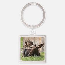 Sitting moose, Alaska, USA Square Keychain