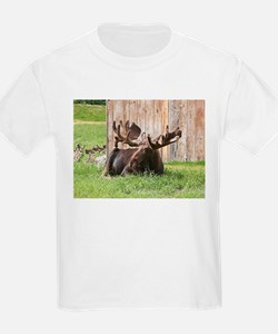 Sitting moose, Alaska, USA T-Shirt