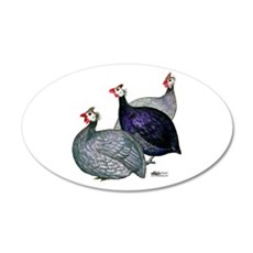 Guineas Three Wall Decal