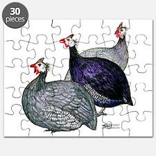 Guineas Three Puzzle