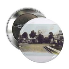 Rosa Park Button