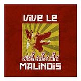 Belgian malinois Square Car Magnets