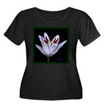 Lily Plus Size T-Shirt