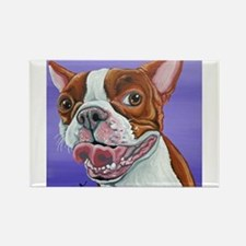 Red Boston Terrier Magnets