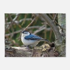 White breasted Nuthatch 5'x7'Area Rug