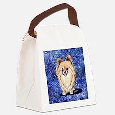 Galaxy Bella Canvas Lunch Bag