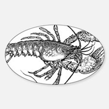 Vintage Lobster illustration Decal