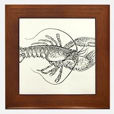 Vintage Lobster illustration Framed Tile