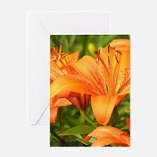 Orange Tiger Lilies Greeting Cards