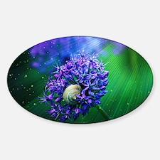 Allium Decal