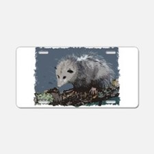 Opossum on a Gnarley Branch Aluminum License Plate