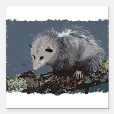 """Opossum on a Gnarley Bra Square Car Magnet 3"""" x 3"""""""