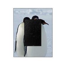Emperor Penguins Huddled Picture Frame
