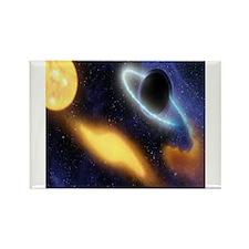 Black Hole Magnets