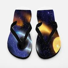 Black Hole Flip Flops