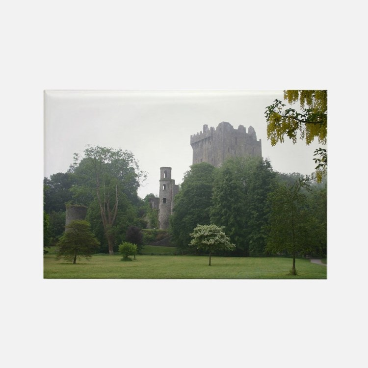 Cute Blarney Rectangle Magnet