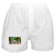 Bungalow And Hammock On Exotic Beach Boxer Shorts