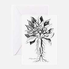 Mandragora autumn mandrake Psychede Greeting Cards