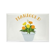Marigold Magnets