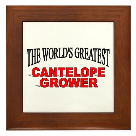 """""""The World's Greatest Cantelope Grower"""" Framed Til"""