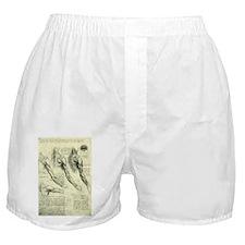Male Anatomy by Leonardo da Vinci Boxer Shorts