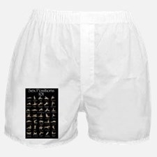 Sex Positions 101 Boxer Shorts