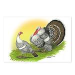 Narragansette Turkey Pair Postcards (Package of 8)